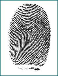 كيفية تحميل دليل المعلم Fingerprint